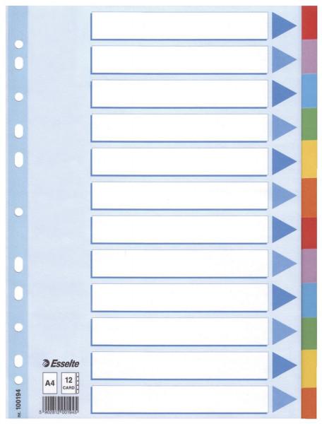 Esselte 100194 Register blanko, Karton, A4, 12 Blatt, weiß, farbige Taben