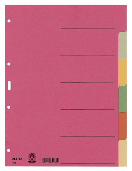 Leitz 4358 Register Karton, blanko, A4, 6 Blatt, farbig