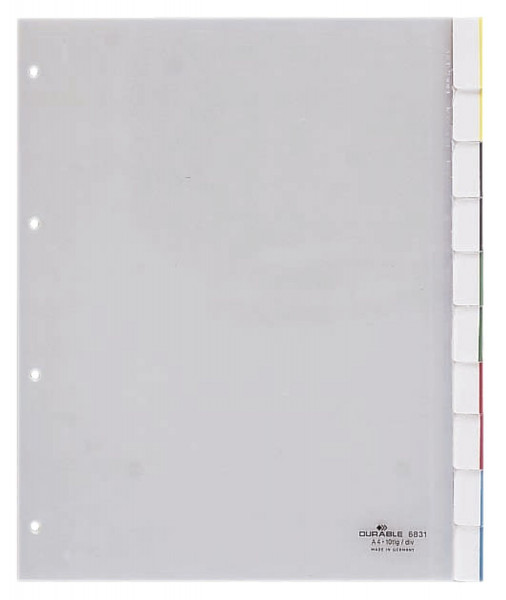 Durable 6831 Register, Hartfolie, blanko, transparent, A4, Überbreite, 10 Blatt