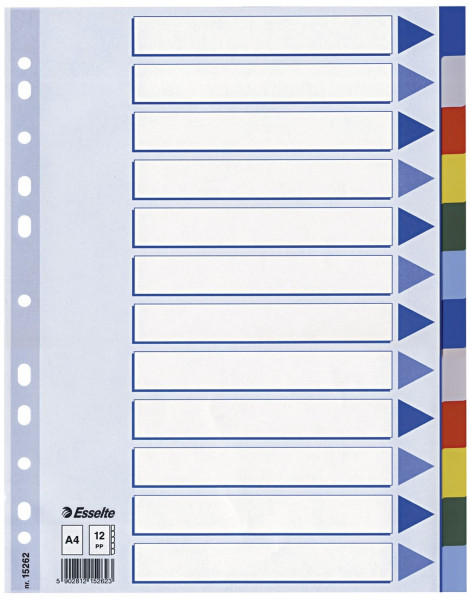 Esselte Register, blanko, PP, A4,12-teilig + Deckblatt, farbig